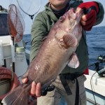 31年2月26日 根魚釣り