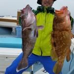31年3月2日 根魚釣り